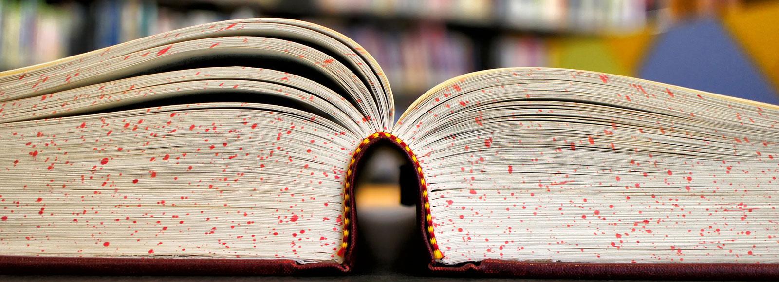 Willkommen bei dem Wissensbringer Verlag